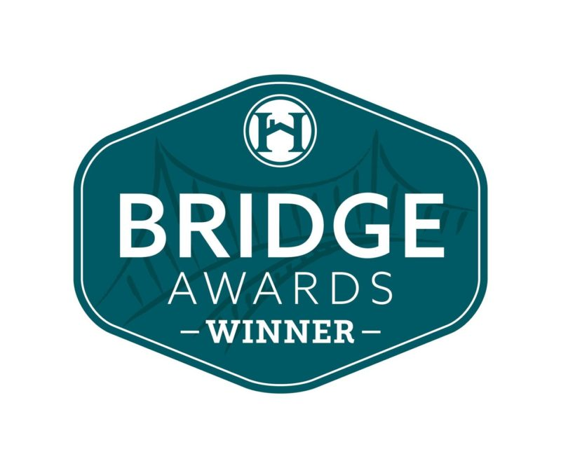 bridge award for best water feature in pool