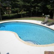 Gunite Kidney Pool